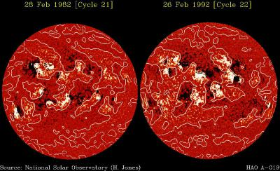 Two solar magnetograms taken in the descending phases of cycles 21 and 22 image